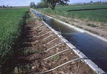Maharashtra government plans higher investment in micro-irrigation project